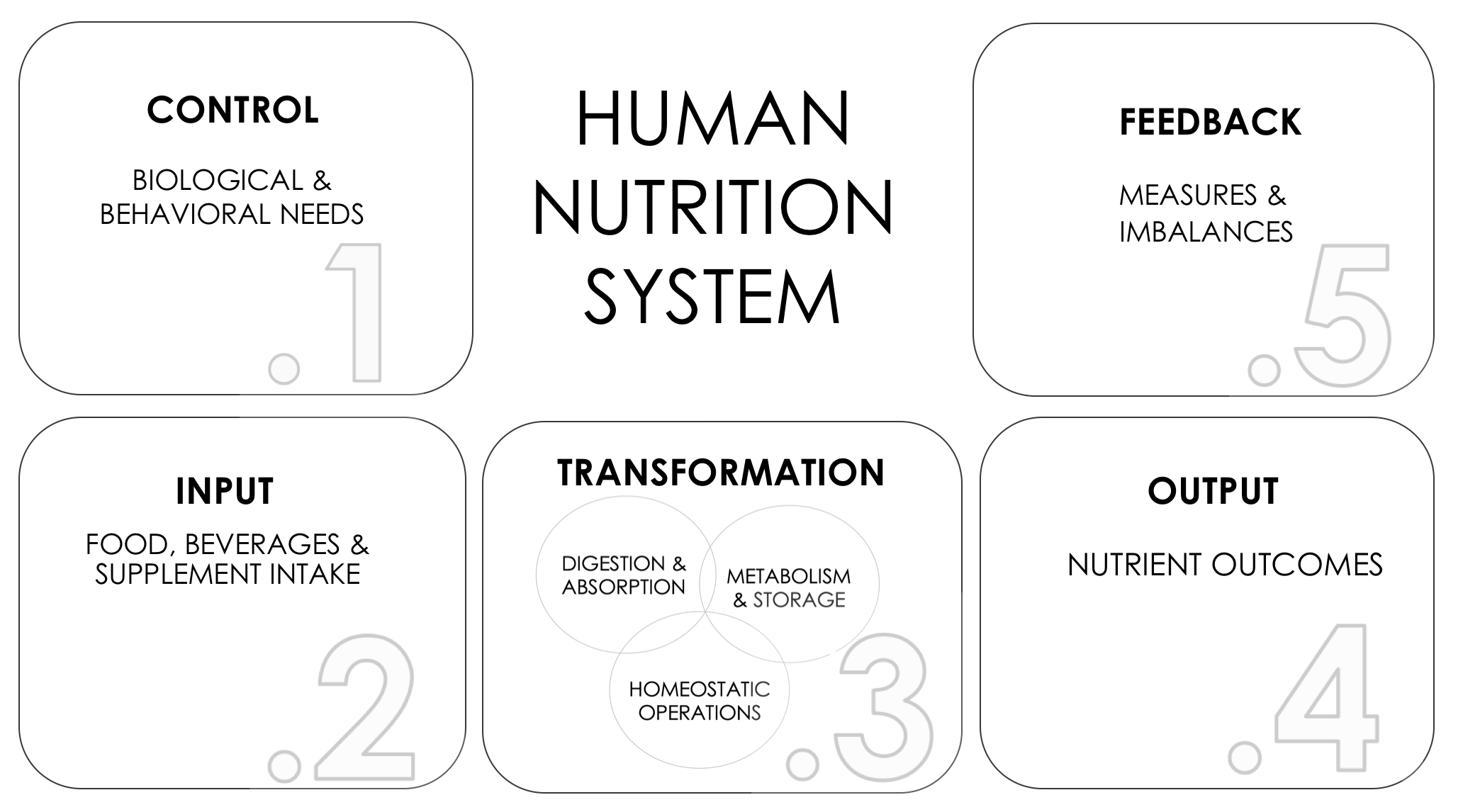A Systems Approach To Human Nutrition Ch 1 The Systems Components