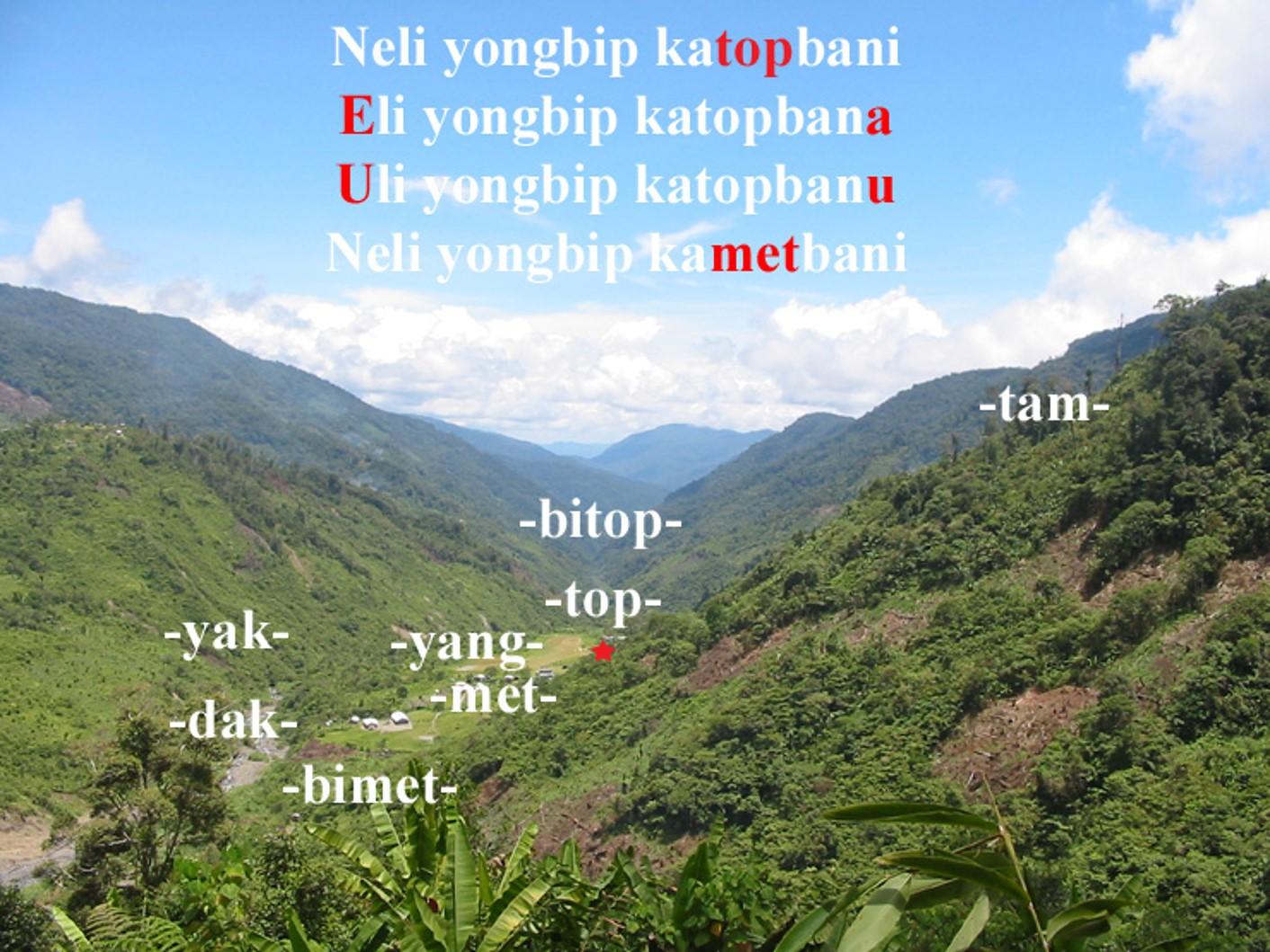 PNGwords.jpg