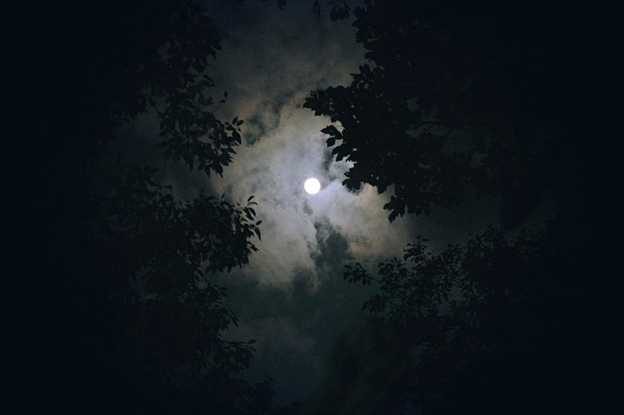 moon-1180345_1280.jpg