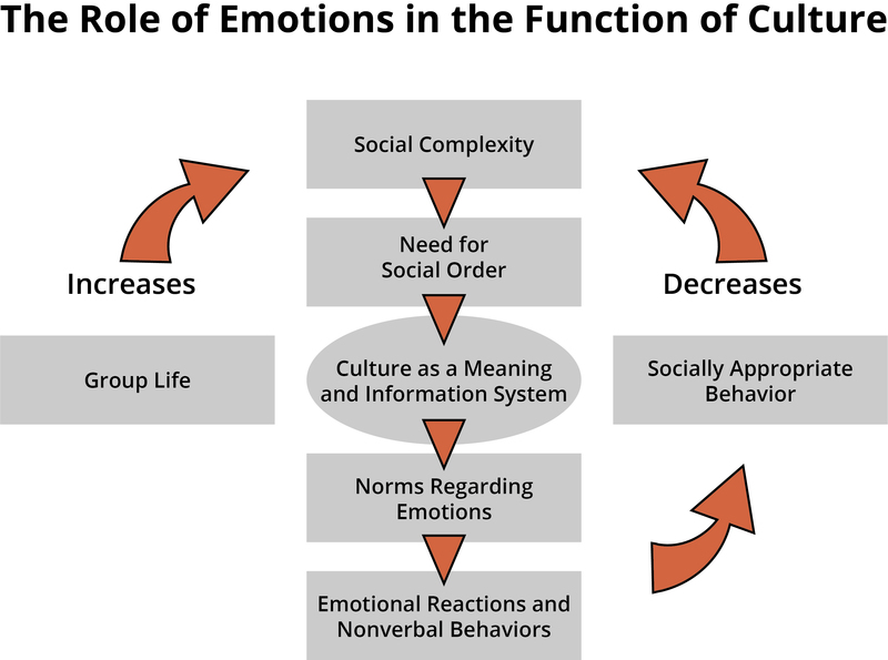development of emotion based on culture for Culture-blind: the psychology of europe, the us, and canada has a tendency to largely ignore the influence of culture on the mind and behavior how do you address these issues cross-cultural psychology is the study of how culture influences the mind and behavior.