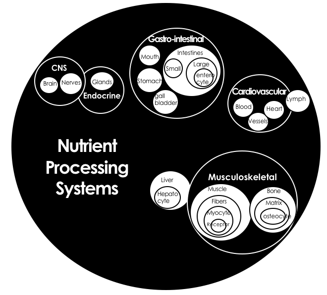 A Systems Approach to Human Nutrition | CH 1  The Systems