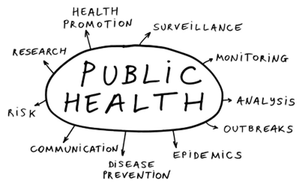 Public Health web.png
